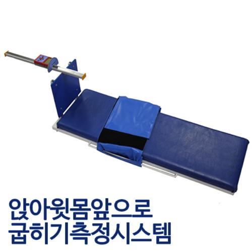 M [대우스포츠산업] PAPS측정장비 앉아윗몸앞으로굽히기측정시스템,DW-782