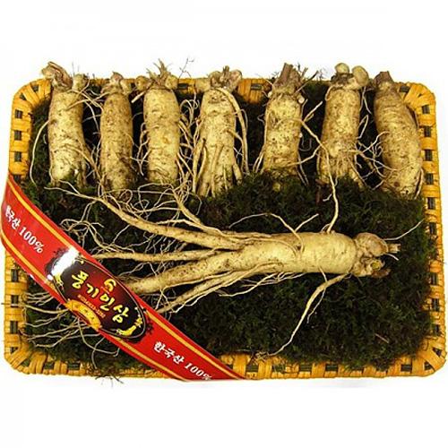 M [풍기] 산지직송 풍기수삼1.5kg/20~24뿌리(등바구니포장)