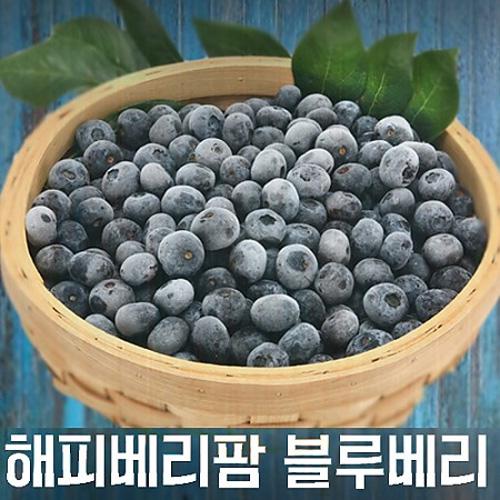 M [해피베리팜] 햇 블루베리/1kg